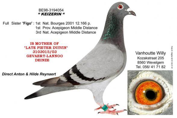 Keizerin Willy Vanhoutte 3194054/98