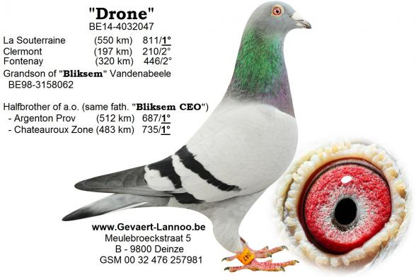 Drone BE14-4032047