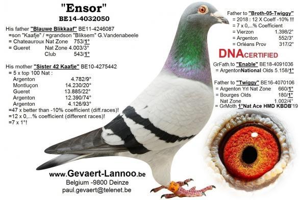 Ensor BE14-4032050