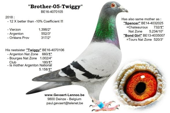 Brother Twiggy  BE16-4070105