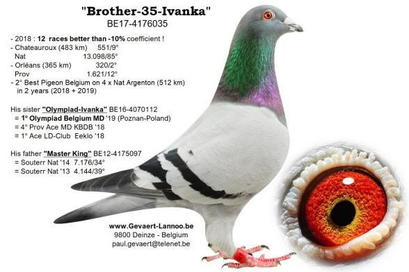 Brother-35-Ivanka  BE17-4176035