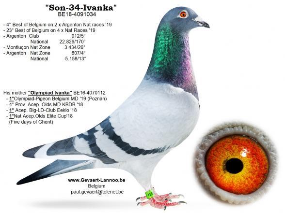 Son-34-Ivanka  BE18-4091034