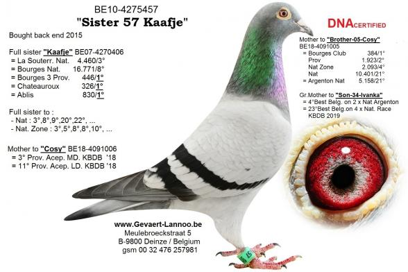 Sister-57-Kaafje     BE10-4275457